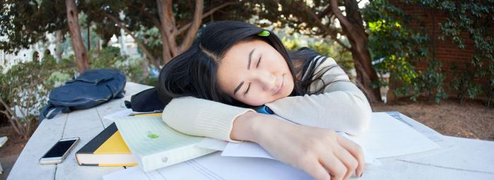 Student studying and sleeping